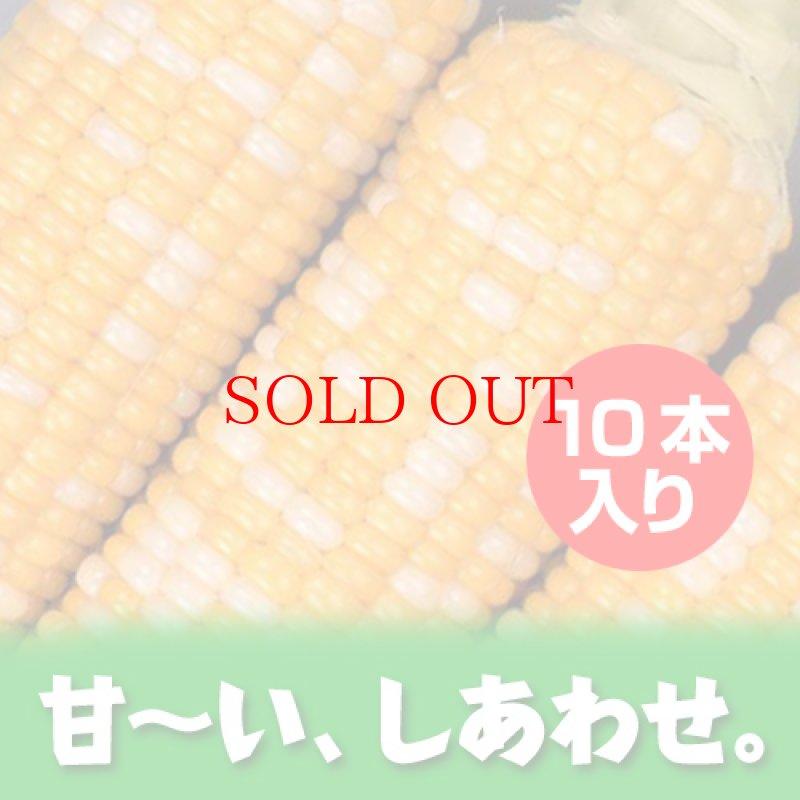 画像1: 木曽駒高原産 『しあわせコーン』(10本入り) (1)